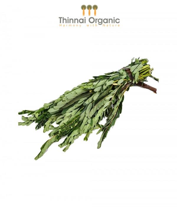 Organic Akaththi Leaves(Kathurumurunga)