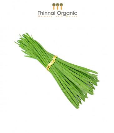 Organic Moringa