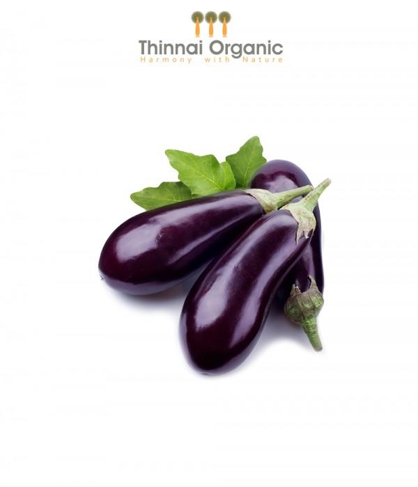 Organic Brinjal